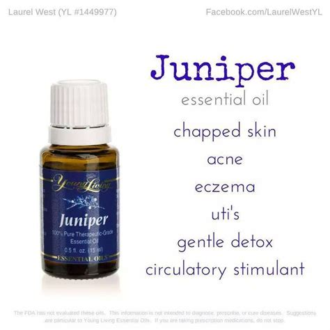 Juniper For Detox by 38 Best Liver Lymph Essential Oils Images On