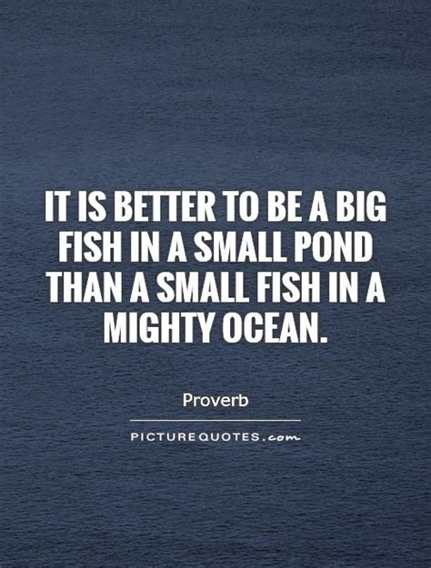 pond quotes big fish quotes big fish sayings big fish picture quotes