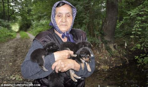 puppies thrown in river i rescued puppies thrown in river by says grandmother 75 who