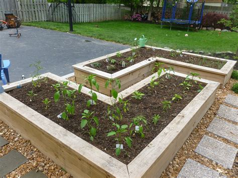 box vegetable garden gardening on raised garden beds raised beds