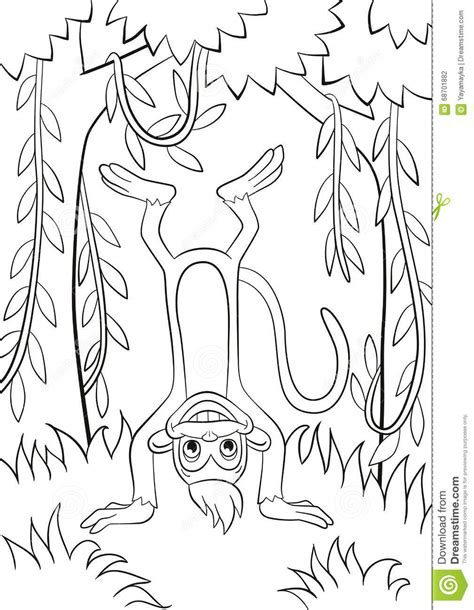 upside down coloring page the monkey is upside down in the forest stock vector