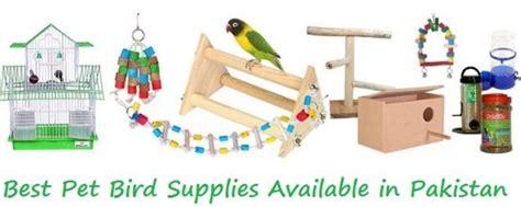 best pet bird supplies available in pakistan