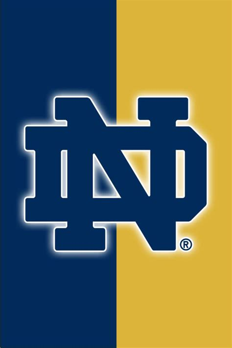 notre dame colors 41 best images about notre dame fighting on