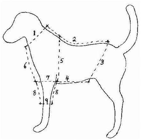 free printable pattern for dog coat free online dog clothes patterns