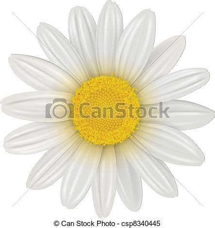 margherita fiore disegno clipart vettoriali di fiore margherita margherita