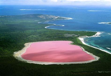 pink lake lake hillier the unique pink lake in western australia traveldigg