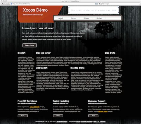 theme chrome opera 3 news templates free for xoops themes xoops news