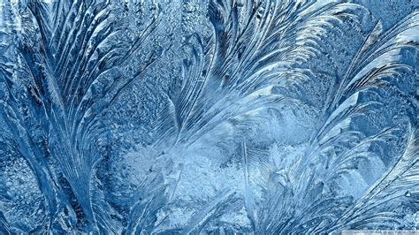 Frozen Glass Wallpaper | download ice flowers on the window wallpaper 1920x1080