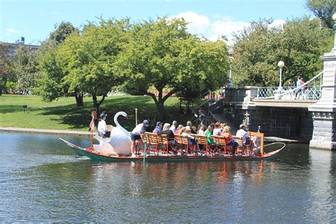 swan boats boston public garden swan boats boston massachusetts wikipedia