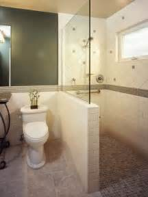 Design For Small Bathroom With Shower Houzz Small Bathrooms Bathroom Ideas