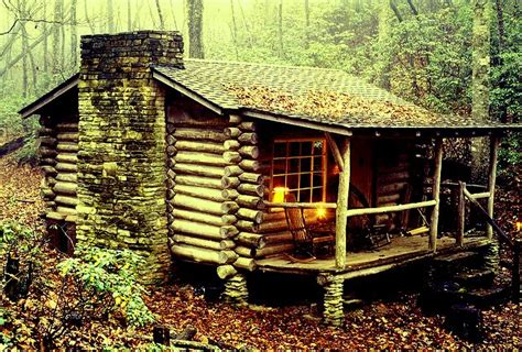 small cabin in the woods the flying tortoise he built a beautiful little rustic