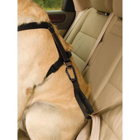 kurgo harness kurgo tru fit smart harness w seat belt tether uttings co uk