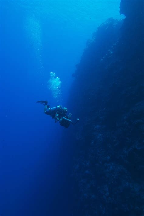 palau dive resorts palau scuba diving travel guide best dive resorts