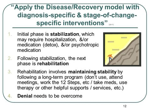Detox Stabilze Aftercare Treatment Phase by Integrated Treatment Of Co Occurring Disorders Ppt