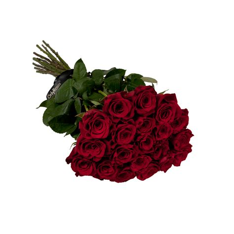 rose can rose stems delivered riyadh flower delivery service