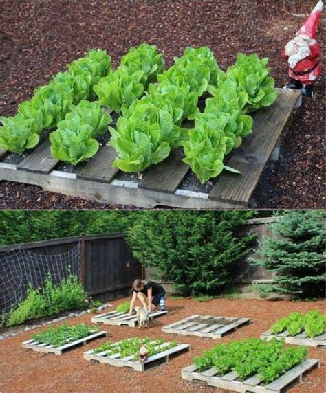 pallet raised garden bed raised bed gardening home design garden architecture