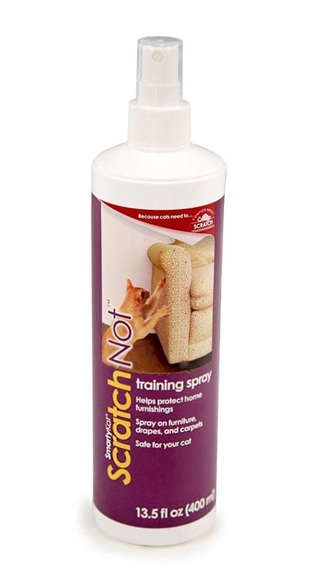 cat and repellent 1000 images about cat repellent and aid on