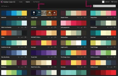 themes colour palette choosing colour schemes
