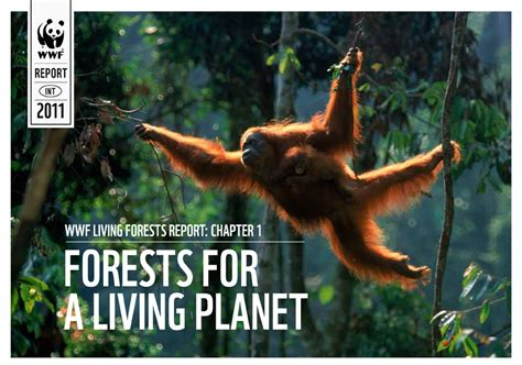 Books From Wwf Flowers Of The Forest by Governments And Business Must Unite In Joint To