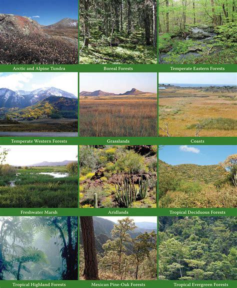 si鑒e habitat habitats of animals driverlayer search engine
