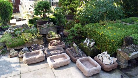 Scottish Rock Garden Club Scottish Rock Garden Club Gt Bulb Log