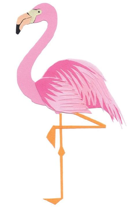 flamingo wallpaper b q best 25 flamingo print ideas on pinterest flamingo