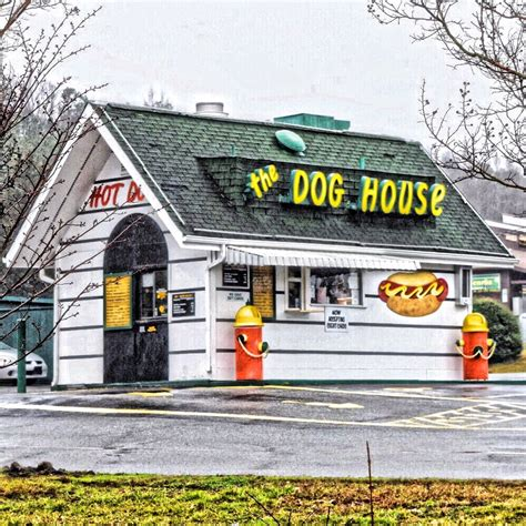 dog house hot dogs the dog house hot dogs 114 boone square st hillsborough nc reviews photos