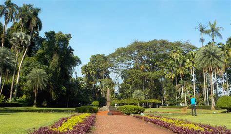 Bogor Botanical Garden File Teijsmann Garden At Bogor Botanical Garden Indonesia Jpg Wikimedia Commons
