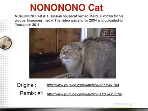 Russian Cat Meme - cat memes 2011 2012