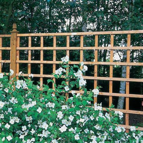 Buy Garden Trellis Trellis Garden Photos