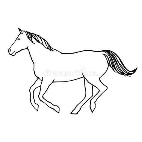 vector outline illustration of running horse stock vector