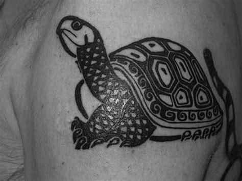 black tortoise tattoo 56 best turtle tattoos ideas collection