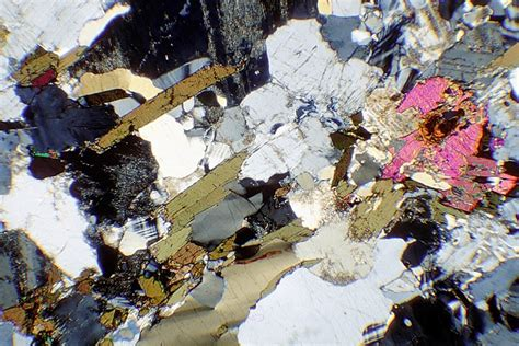 biotite under thin section rocks of nw scotland rock sle images