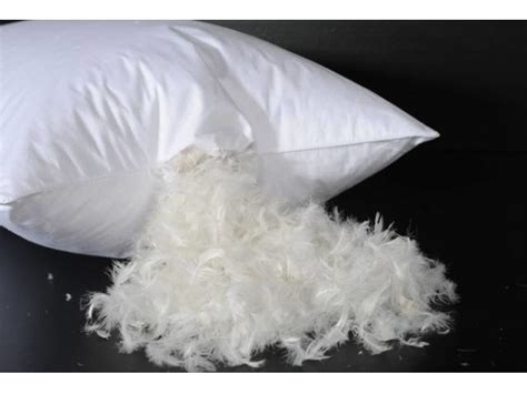 Feather Pillow by Goose Feather Pillow Bridgat