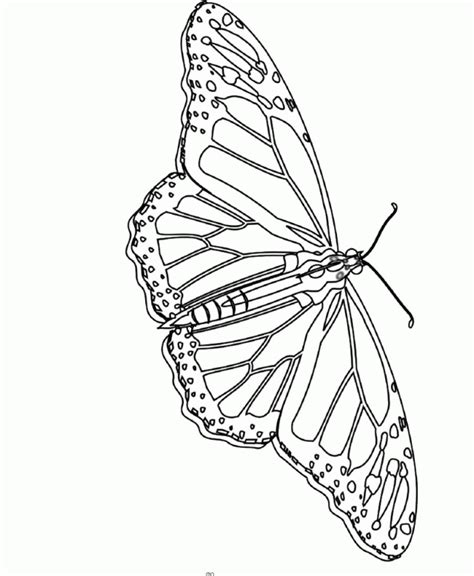 unique coloring pages pdf monarch butterfly unique and is cool coloring pages