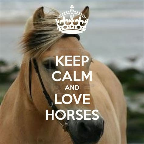 Horse Wall Stickers Uk keep calm and love horses keep calm and carry on image