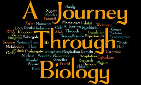 biological themes in film class ajourneythroughbiology licensed for non commercial use