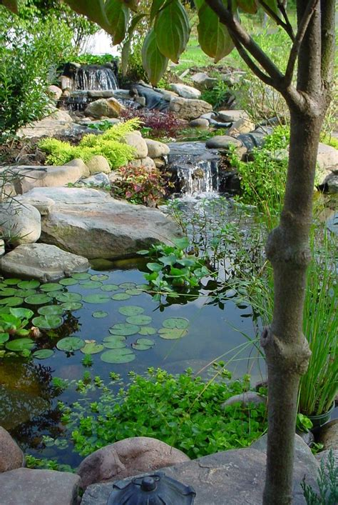 small water feature garden pond start an easy backyard