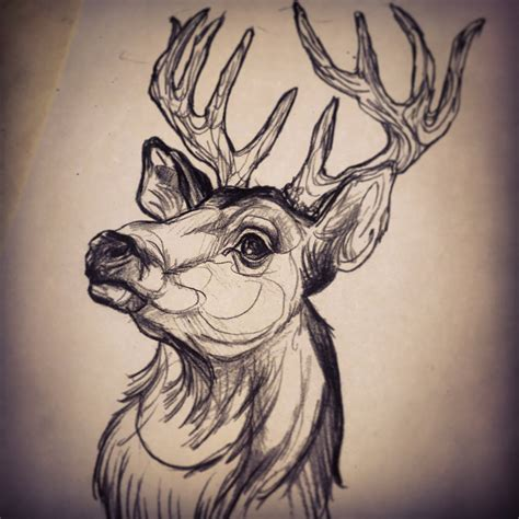 deer head by dicknosetengu on deviantart
