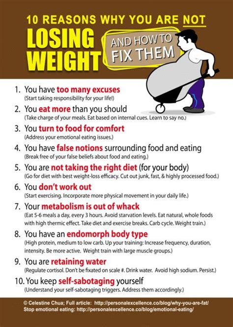 Weight Loss Tips Burn All The Calories You Eat by 10 Reasons Why You Are Not Losing Weight And How To Fix