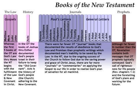 niv the books of the bible new testament hardcover enter the story of jesusâ church and his return books new testament overview organization of the books page 2