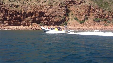 rib jet boat for sale uk 17 best ideas about rib boats for sale on pinterest