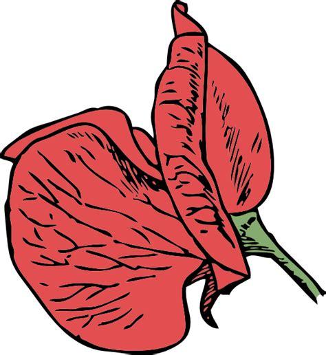 sweet pea clip art at clker com vector clip art online