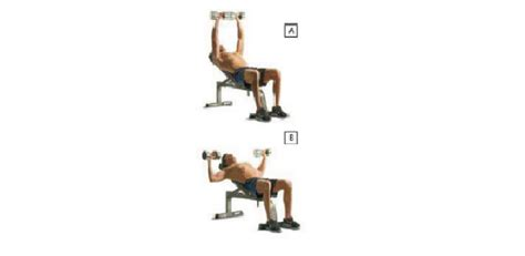 dumbbell bench press incline pectoral exercises for chest workout health articles