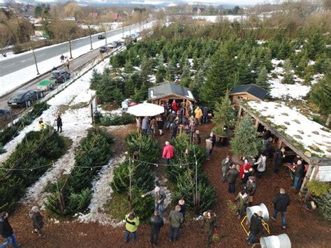 weihnachtsbaumschalgen bei dresden home www gerber galabau de