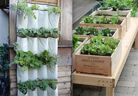 orto in terrazza come fare soluzioni pratiche per allestire un orto in casa