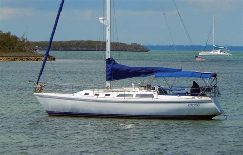 hooked   catalina  sail magazine