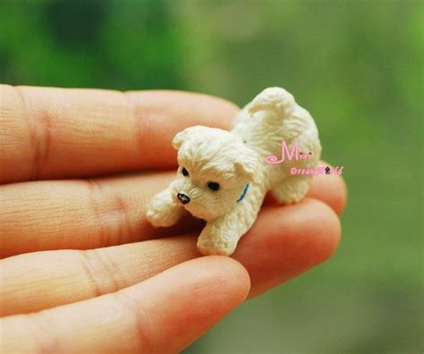 shipping puppies miniature puppies reviews shopping reviews on miniature puppies aliexpress