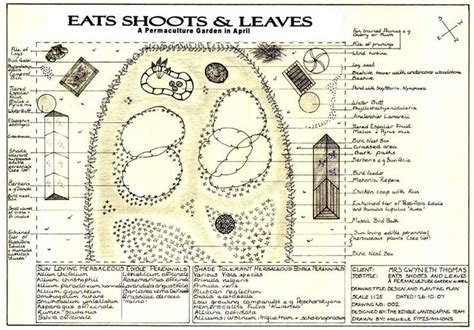 1106 Best Images About Farmette On Pinterest Raised Beds Permaculture Vegetable Garden Layout