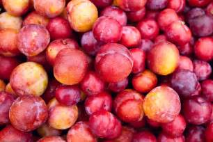 file plums farmers market seeminglee jpg wikipedia